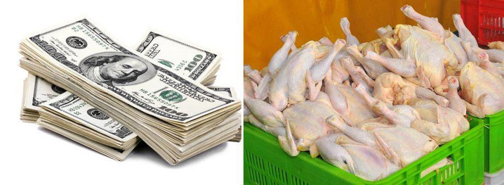 دلار مرغی توهم یا واقعیت