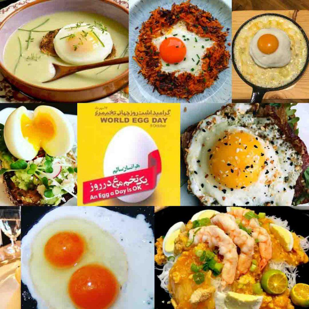 هفدهم مهرماه روز جهانی تخم مرغ مبارک باد.