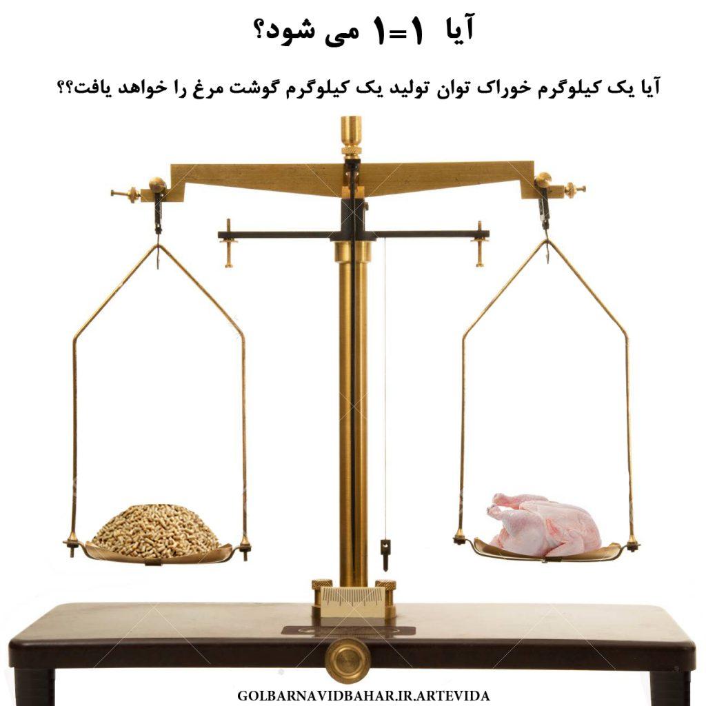 بررسی راهکارهای بهبود ضریب تبدیل FCR در مرغ گوشتی